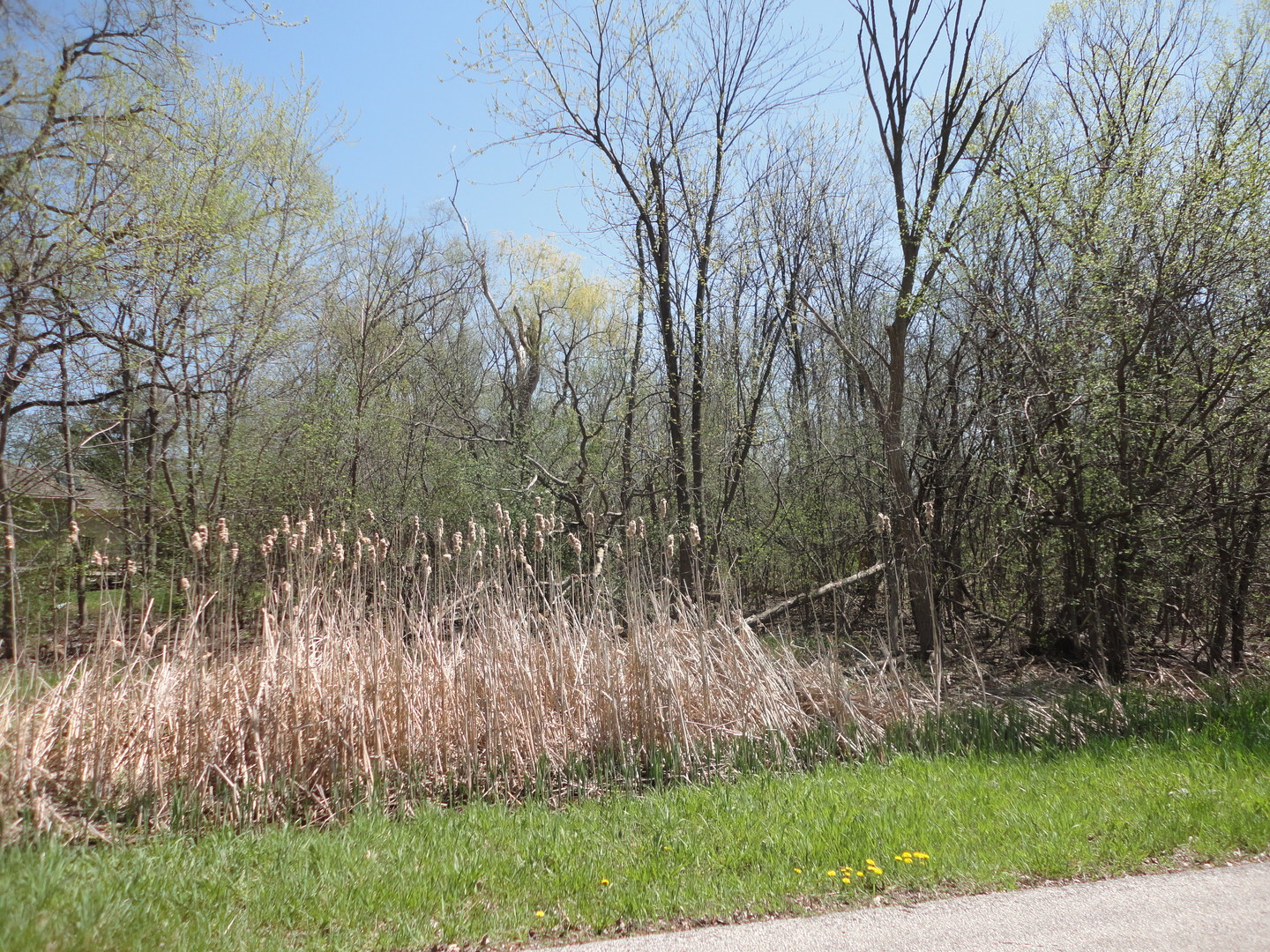 Build your New Home here in this Quiet Country-Like setting with easy access to highway system.