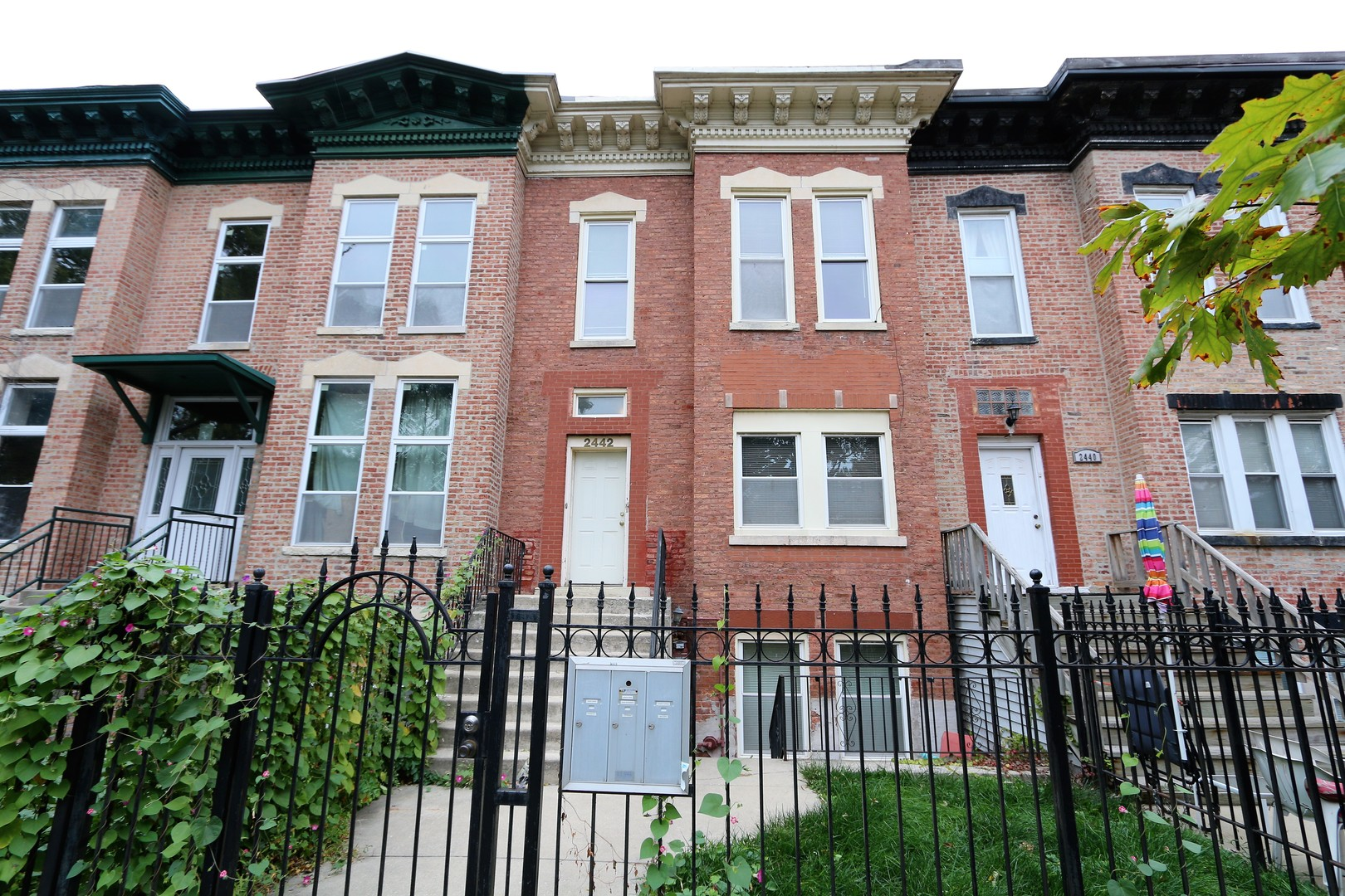 2442 Taylor Street, Chicago, Illinois 60612, 1 Bedroom Bedrooms, ,1 BathroomBathrooms,Residential Rental,For Rent,Taylor,10910136